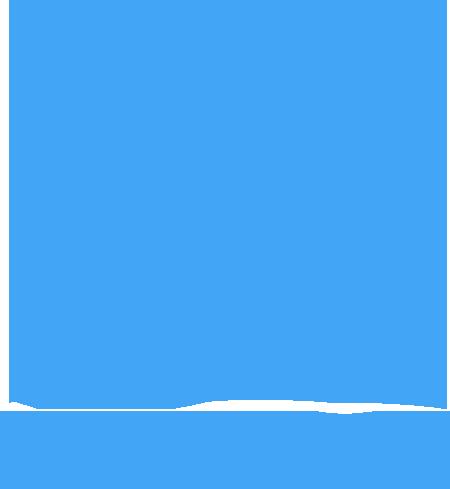 Carole Finn, OSA, CFS, SFCA