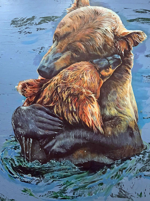Grizzlies Bear Hug Great Bear Rainforest