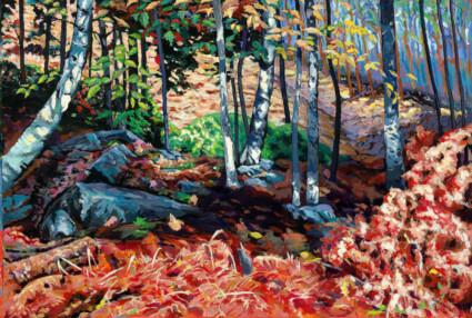 Going Up: Birch Grove, Haliburton Forest Ontario