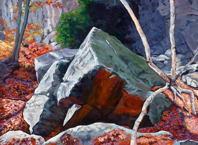 Rock Rubble, Haliburton Forest Ontario