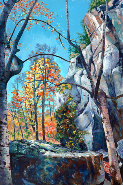 Summit Protrusion Left View:Haliburton Forest Ontario