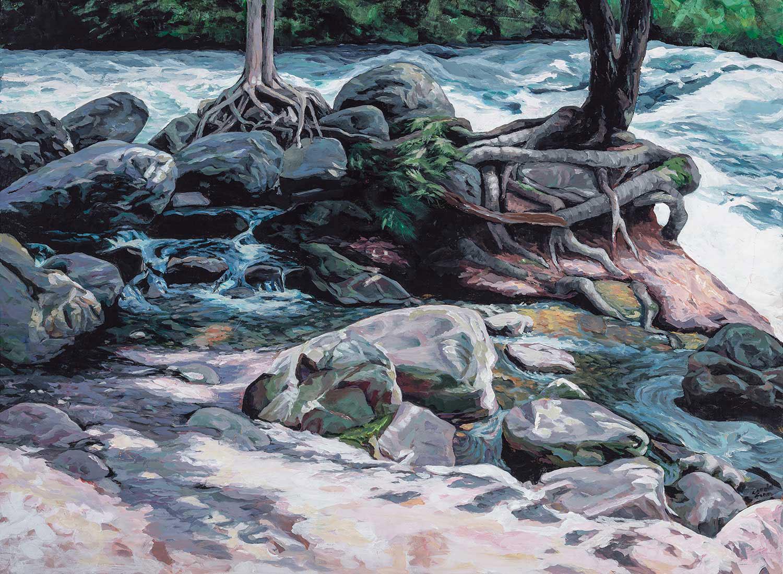 The Falls Minden: White Water Ontario