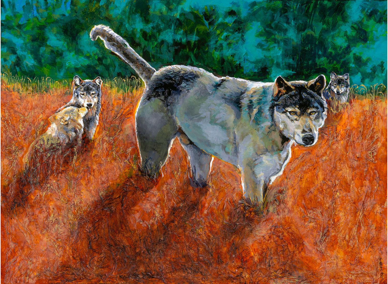 Wolves in Sunset Great Bear Rainforest