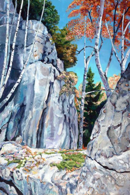 Summit Protrusion, Middle View: Haliburton Forest Ontario