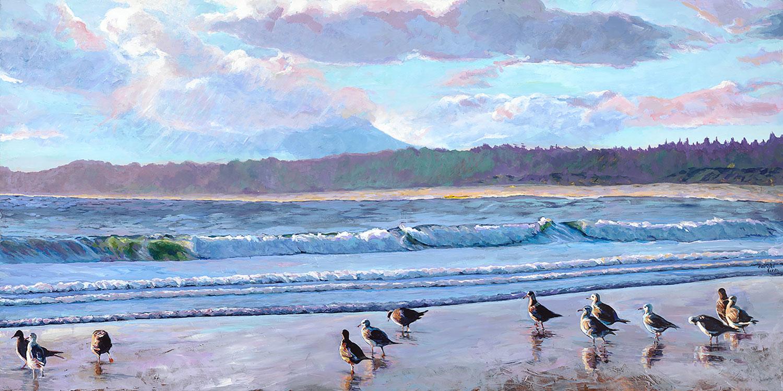 Carole Finn Wickaninnish Beach Western Gulls