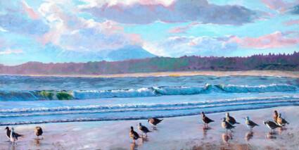 Napoleon Gulls at Wickaninnish Beach, Pacific Rim